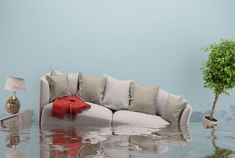 Useful Tips for Preventing Water Damage in Your Home
