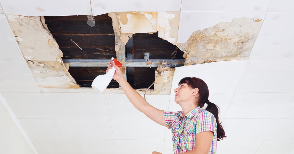 Dont Let a Roof Leak Ruin Your Home