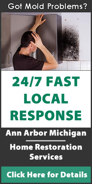 A2Restoration Ann Arbor Michigan