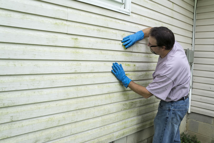Find the Best Siding Contractors in Grosse Ile Michigan with These Tips 🙂👏👍💁‍♂️