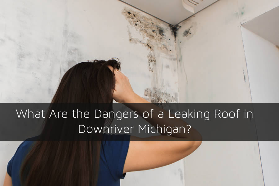 What Are the Dangers of a Leaking Roof in Downriver Michigan?