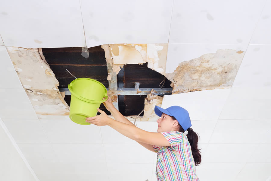 ⚡️⚠️ What Are the Dangers of a Leaking Roof in Downriver Michigan? ⚠️⚡️😬