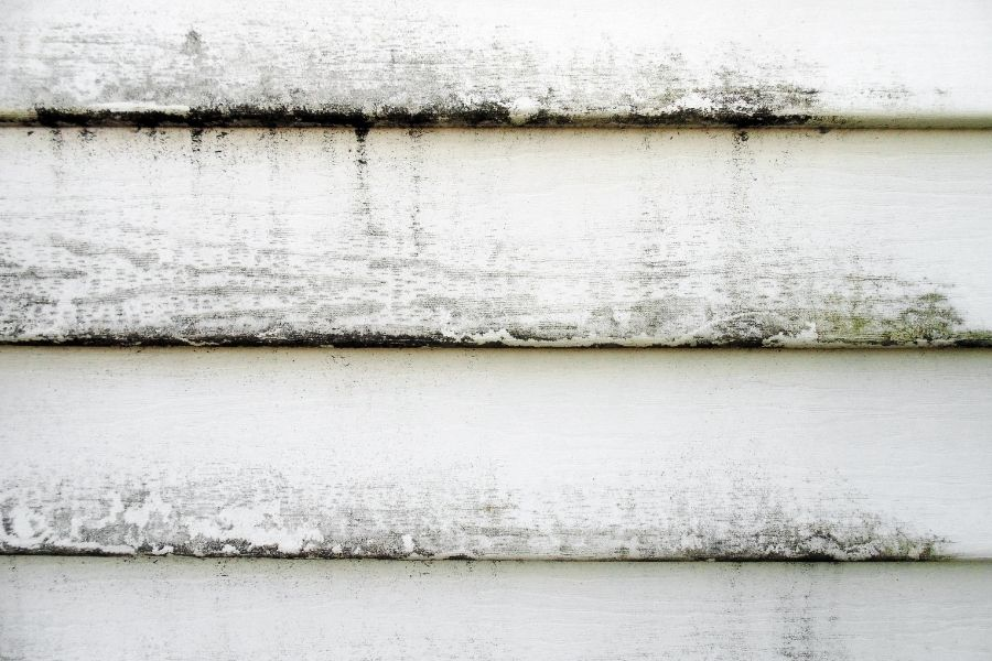 ⭐⭐⭐⭐⭐ Tips for Cleaning Vinyl Siding in Plymouth Michigan And What to Do if There are Problems ✅🏠🏡🏚🏘🌅